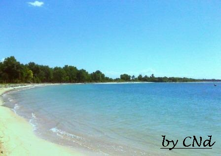 Pantai elaq elaq sekotong
